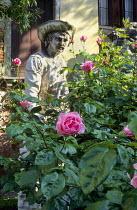Roses, sculpture