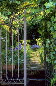 View through metal gate into courtyard, path leading to statue, hydrangea, irises
