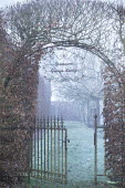 Clipped archway in beech hedge, metal gate, frost on lawn