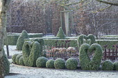Metal bird and fence ornaments in border, clipped Buxus sempervirens hearts and balls