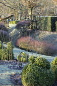 Metal plant supports amongst box topiary in winter garden
