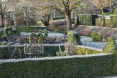 Metal plant supports in border, clipped Buxus sempervirens balls, hedges and heart topiary