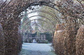 Beech hedges, metal arches