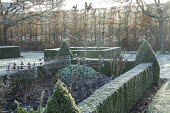 Clipped box hedge edging and pyramid topiary around border with metal plant supports