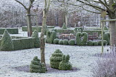 Metal bird and fence ornaments in border, clipped Buxus sempervirens hearts, snails and balls