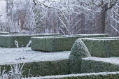 Clipped box hedge edging and pyramid topiary around borders with metal plant supports