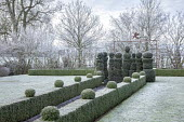 Skittle alley in frost, topiarised box hedge and yew topiary, metal archway