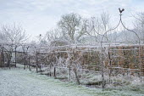Metal pergola in frost