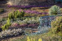 Metal bench overlooking heather border