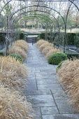 Domes of Hebe rakaiensis, Hakonechloa macra edging stone path under metal pergola