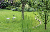 Chairs on lawn, sinuous step through lawn