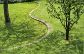 Sinuous curving brick step in lawn