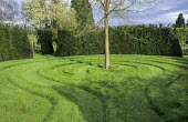 Turf maze around tree