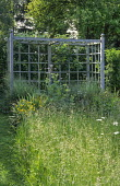 Cloister garden, wildflower meadow, long grass, trellis arbour