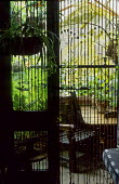 View through bamboo screen to balcony, table and chair, tree fern, Cyathea medullaris