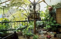 Balcony, table, parasol, cherub in cage, tree fern, Cyathea medullaris