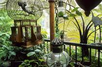 Balcony, parasol, cherub in cage, lantern, tree fern, Cyathea medullaris