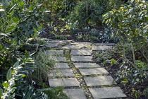 Paving slab and pebble path