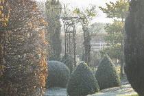 Box topiary, metal arbour
