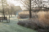 Wooden arbour and bench in orchard, frost on lawn, Calamagrostis x acutiflora 'Overdam', Nigella damascena seedheads