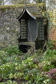 Wooden arbour in corner of shady walled garden, brick wall, Helleborus x hybridus, snowdrops