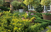 Standard trained euonymus underplanted with pelargoniums in large terracotta containers within clipped box parterre, sundial, yew hedge