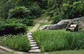Stepping stones across bog garden, wooden bench
