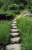 Stepping stones across bog garden