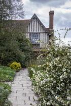 Yorkstone path leading to house in Sunken Garden, Osmanthus delavayi, camellia