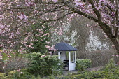 View through Prunus cerasifera 'Nigra' to white painted summerhouse