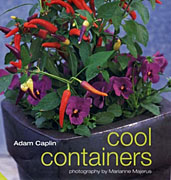 Cool Containers (Jacqui Small, 2003)