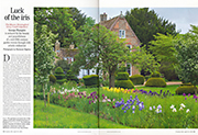 Luck of the Iris Country Life 29th April 2015