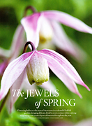 The jewels of spring Country Living March 2011