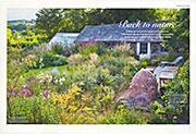 Back to nature Gardens Illustrated September 2014