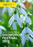 NGS Snowdrop Festival